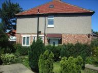 3 bedroom semi detached house to rent in Oak Avenue, South Shields