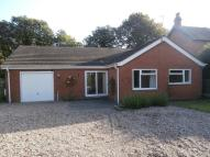Detached Bungalow for sale in Springfield Road...