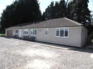 Detached Bungalow to rent in Turnpike Road, Blunsdon...