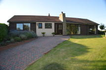 4 bedroom Detached Bungalow for sale in Upper Way, Upper Longdon