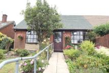 Semi-Detached Bungalow for sale in Llanover Road Estate...