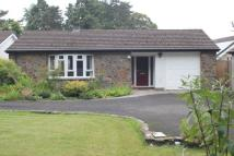 3 bed Detached Bungalow for sale in New School Road, Gilwern...