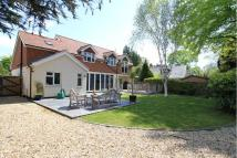 4 bedroom Detached property to rent in Butts Ash Lane, Hythe...