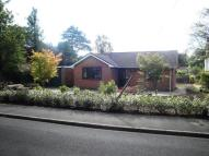 Detached Bungalow to rent in LIME WALK...