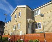 semi detached house to rent in Snowberry Walk
