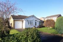 Detached Bungalow in Kensington Gardens...