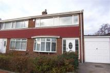 semi detached property to rent in Broomfield Avenue...
