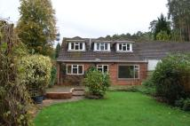 3 bed Bungalow to rent in Latchwood Lane...