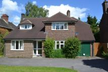 4 bed home to rent in Broomleaf Road, Farnham...