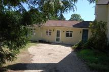 Bungalow to rent in Rosemary Lane, Rowledge