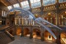 Natural Hist. Museum