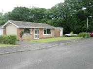 3 bedroom Detached Bungalow for sale in 13 Cwm Halen, New Quay...