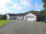 Cwmcou Detached Bungalow for sale