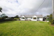 Detached Bungalow for sale in Tresparrett, Tresparrett