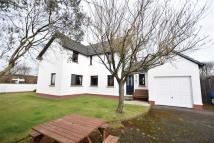 Detached property for sale in Bradworthy, Holsworthy
