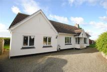 4 bed Detached property for sale in Marhamchurch...