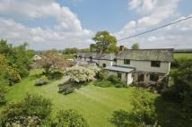 Detached house for sale in Hilfield, Dorset