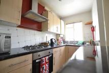 1 bedroom Flat to rent in Alfred Road, Brighton