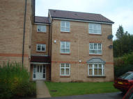 14 Tavistock Park Ground Flat to rent