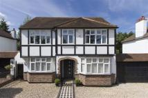 Detached home in Orchard Avenue, Shirley...