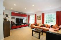 4 bed semi detached property in Crystal Palace Park Road...