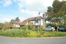 4 bed property in Padbrook, Limpsfield...
