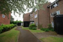 1 bed Apartment in Dyke Drive, Orpington