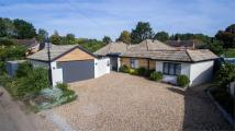 4 bed Detached Bungalow in The Brae, Croft Lane...