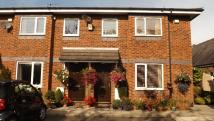 2 bed Terraced house to rent in Beechwood Ct...