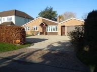 Bungalow for sale in Links Road, Kirby Muxloe...