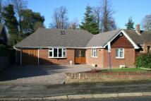 3 bedroom Detached property in Banky Meadow, Maidstone...