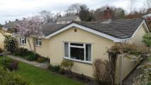 Character Property for sale in Chardstock, Axminster