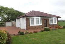 2 bedroom Bungalow to rent in Burnhouse Road...