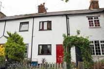 Cottage for sale in Buntingford, Herts