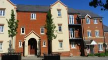 2 bed Ground Flat to rent in Romney Point
