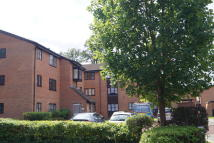 Studio apartment in TEMPSFORD CLOSE, Enfield...