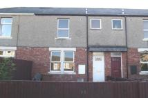 2 bed Terraced house to rent in Park Avenue , Concord ...