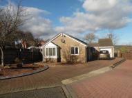 3 bed Detached Bungalow in Porthcawl Drive...