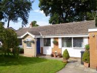 Detached Bungalow for sale in Longroyde Grove...