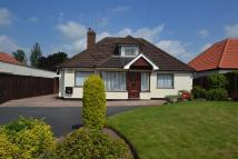 Detached Bungalow for sale in Stocks Lane, Newland...