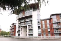 Flat to rent in Kelvin Gate