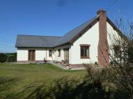 Bungalow for sale in Llangain