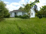 Bungalow for sale in Llangadog