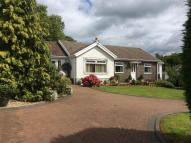 4 bed Bungalow in Dyffryn Road, Ammanford