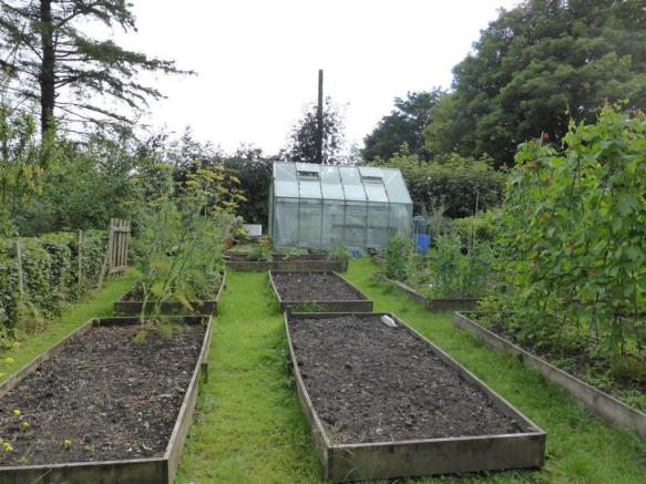 SOFT FRUIT GARDEN AND ORCHARD