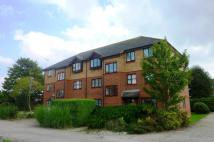Flat to rent in Dorking Court, Rustington