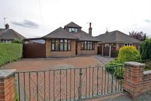Detached Bungalow in Sandfield Road, Arnold...