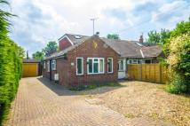 Bungalow in Park Road, Sandhurst...