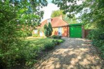 Bungalow for sale in Old Welmore, Yateley...