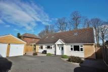 Bungalow for sale in Greenway Close, Rothley...